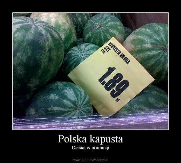 Polska kapusta – Dzisiaj w promocji
