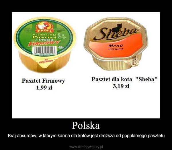 Polska – Kraj absurdów, w którym karma dla kotów jest droższa od popularnego pasztetu