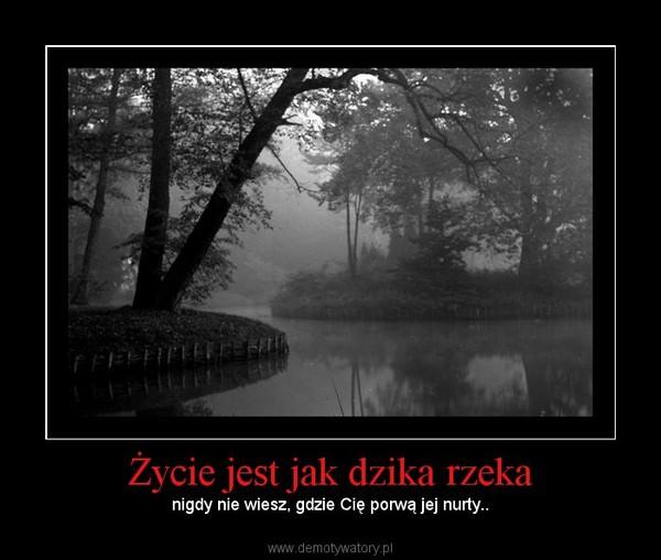Życie jest jak dzika rzeka –  nigdy nie wiesz, gdzie Cię porwą jej nurty..