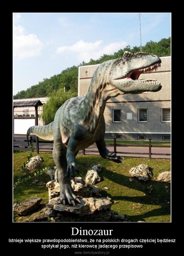 Dinozaur – Istnieje większe prawdopodobieństwo, że na polskich drogach częściej będzieszspotykał jego, niż kierowcę jadącego przepisowo