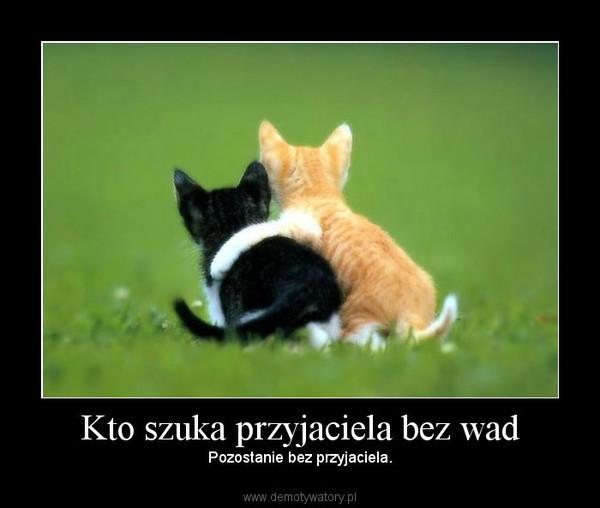 Kto szuka przyjaciela bez wad – Pozostanie bez przyjaciela.