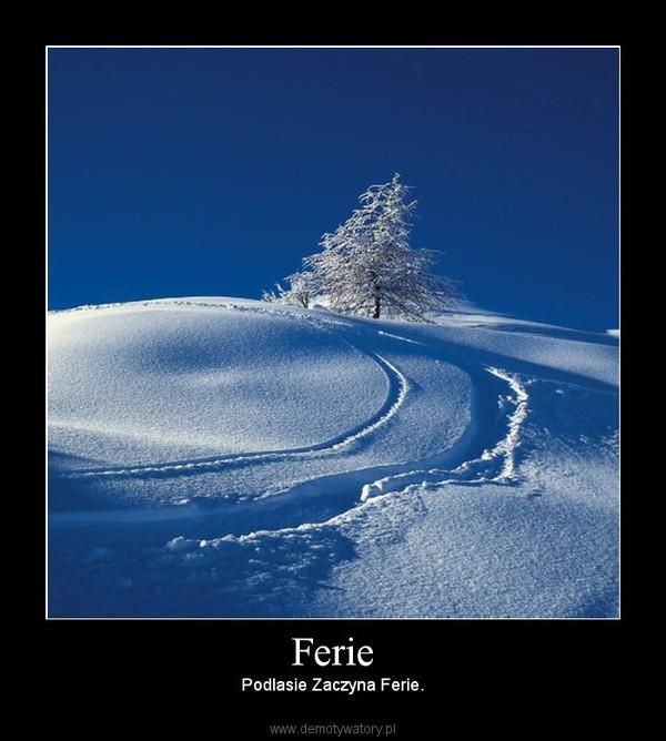 Ferie – Podlasie Zaczyna Ferie.