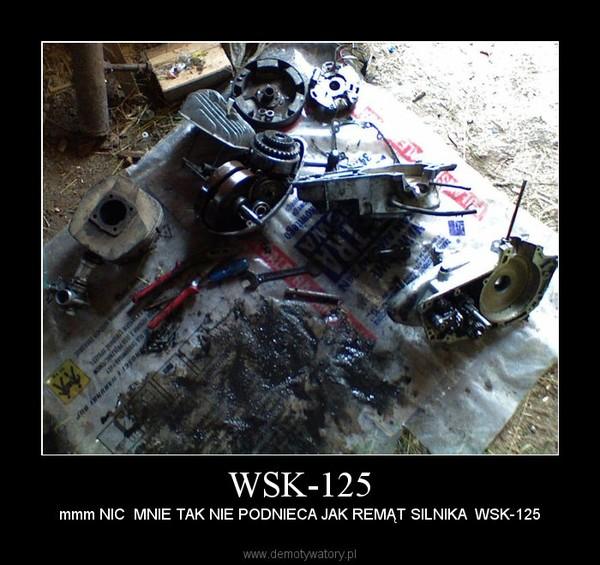WSK-125 – mmm NIC  MNIE TAK NIE PODNIECA JAK REMĄT SILNIKA  WSK-125