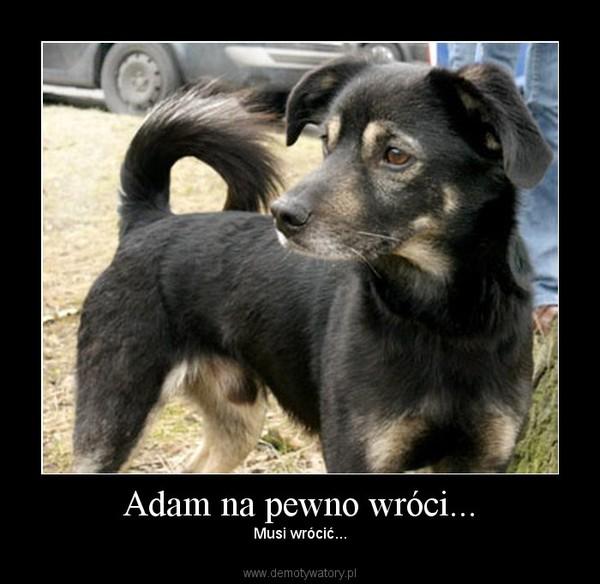 Adam na pewno wróci... – Musi wrócić...