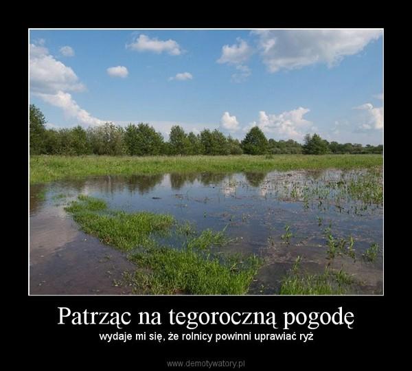 Patrząc na tegoroczną pogodę – wydaje mi się, że rolnicy powinni uprawiać ryż