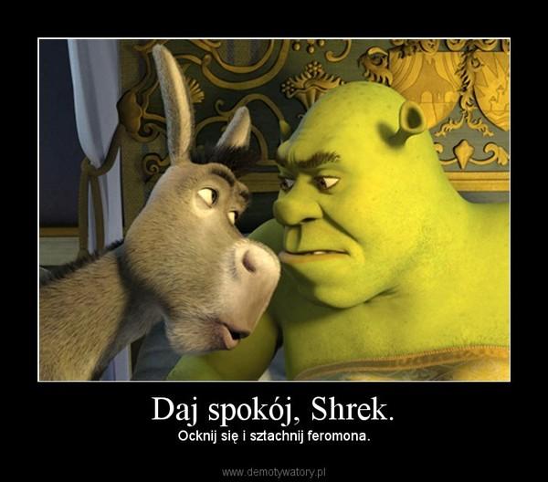 Daj spokój, Shrek. – Ocknij się i sztachnij feromona.