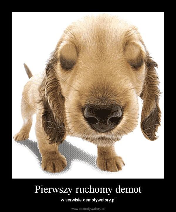 Pierwszy ruchomy demot – w serwisie demotywatory.pl