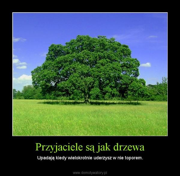 Przyjaciele są jak drzewa – Upadają kiedy wielokrotnie uderzysz w nie toporem.
