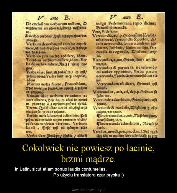 Cokolwiek Nie Powiesz Po łacinie Brzmi Mądrze