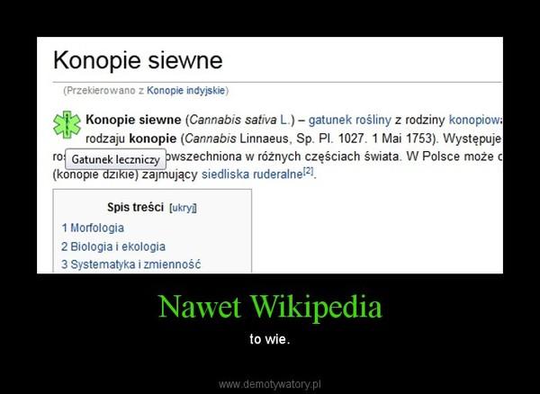 Nawet Wikipedia – to wie.