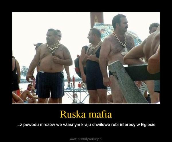 Ruska mafia – ...z powodu mrozów we własnym kraju chwilowo robi interesy w Egipcie