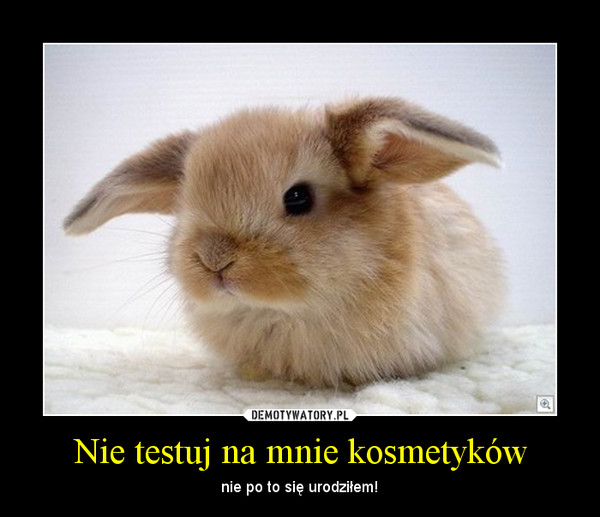 Nie testuj na mnie kosmetyków – nie po to się urodziłem!