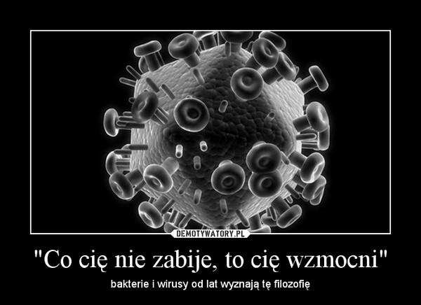 """""""Co cię nie zabije, to cię wzmocni"""" – bakterie i wirusy od lat wyznają tę filozofię"""