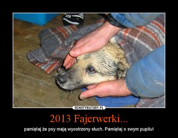 2013 Fajerwerki... – pamiętaj że psy mają wyostrzony słuch. Pamiętaj o swym pupilu!