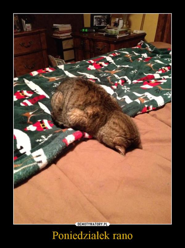 Poniedziałek rano –