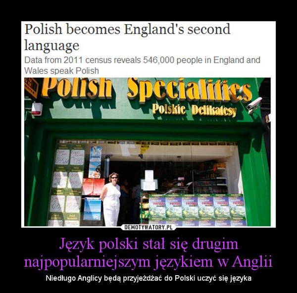 Język polski stał się drugim najpopularniejszym językiem w Anglii – Niedługo Anglicy będą przyjeżdżać do Polski uczyć się języka