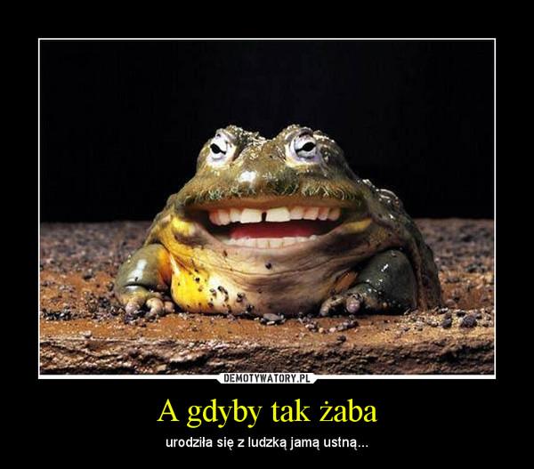 A gdyby tak żaba – urodziła się z ludzką jamą ustną...