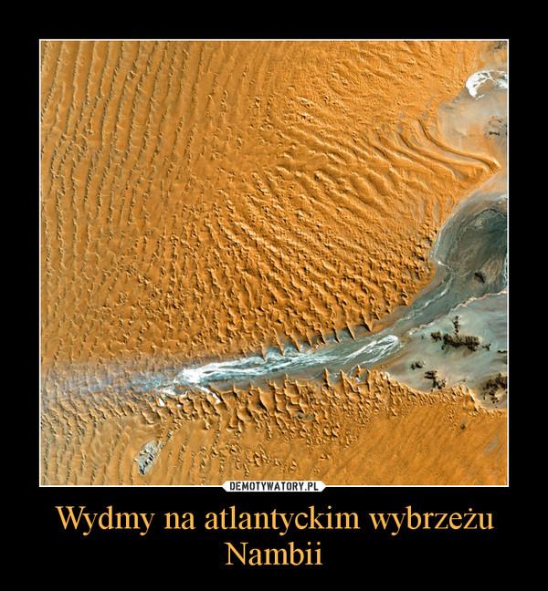 Wydmy na atlantyckim wybrzeżu Nambii –