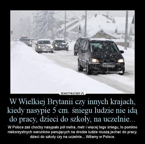 W Wielkiej Brytanii czy innych krajach, kiedy nasypie 5 cm. śniegu ludzie nie idą do pracy, dzieci do szkoły, na uczelnie... – W Polsce zaś choćby nasypało pół metra, metr i więcej tego śniegu, to pomimo niekorzystnych warunków panujących na drodze ludzie muszą jechać do pracy, dzieci do szkoly czy na uczelnie... Witamy w Polsce.