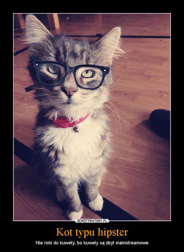 Kot typu hipster – Nie robi do kuwety, bo kuwety są zbyt mainstreamowe