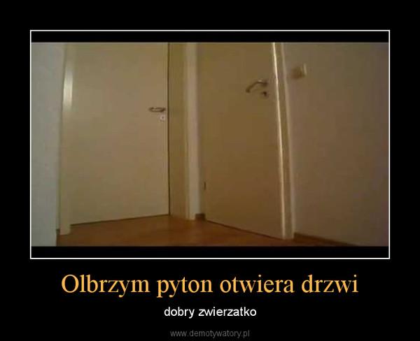 Olbrzym pyton otwiera drzwi – dobry zwierzatko