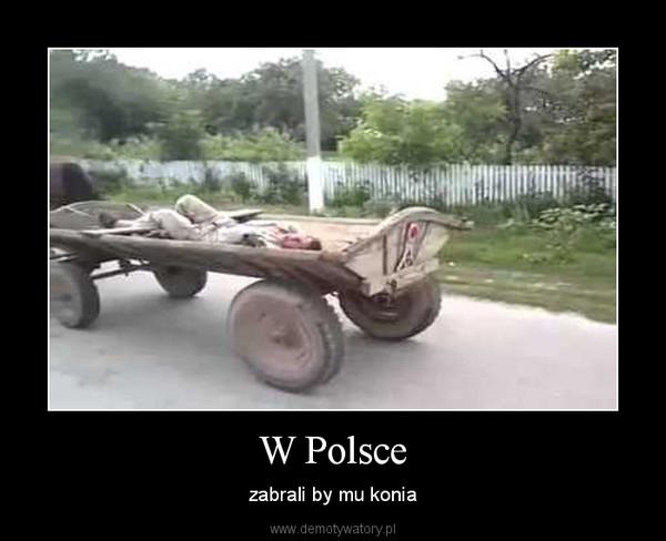 W Polsce – zabrali by mu konia