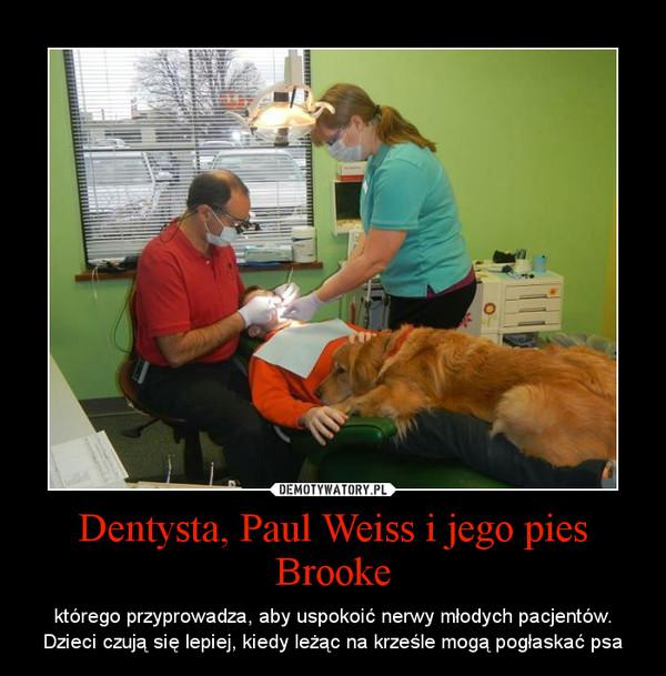 Dentysta, Paul Weiss i jego pies Brooke – którego przyprowadza, aby uspokoić nerwy młodych pacjentów. Dzieci czują się lepiej, kiedy leżąc na krześle mogą pogłaskać psa