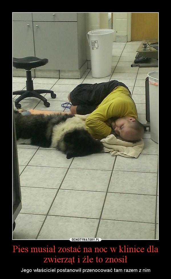 Pies musiał zostać na noc w klinice dla zwierząt i źle to znosił – Jego właściciel postanowił przenocować tam razem z nim
