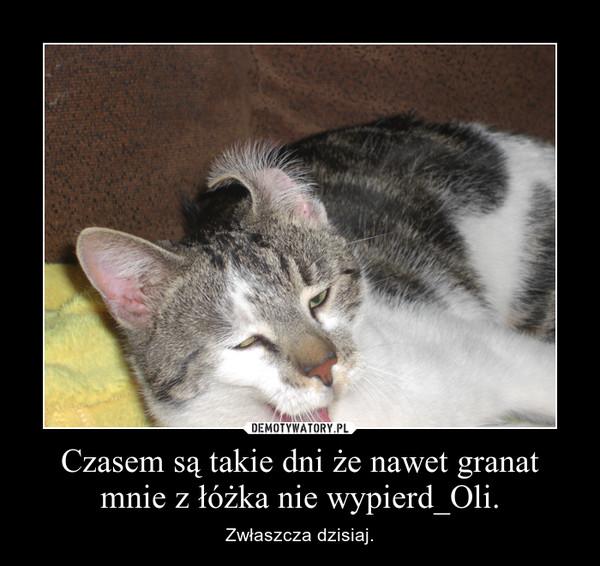 Czasem są takie dni że nawet granat mnie z łóżka nie wypierd_Oli. – Zwłaszcza dzisiaj.