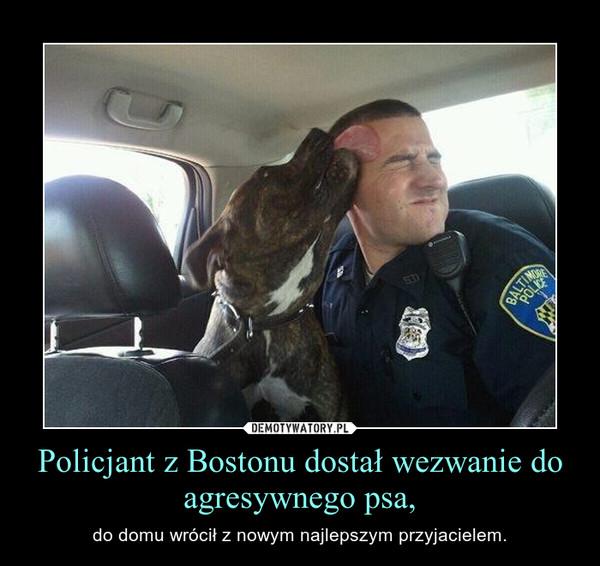 Policjant z Bostonu dostał wezwanie do agresywnego psa, – do domu wrócił z nowym najlepszym przyjacielem.
