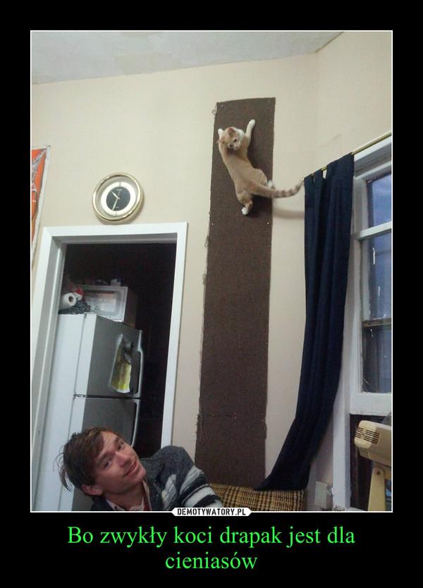 Bo zwykły koci drapak jest dla cieniasów –