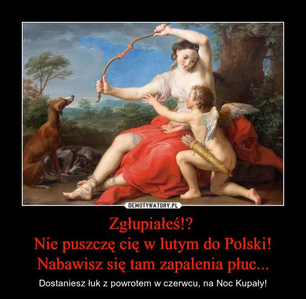 Zgłupiałeś!? Nie puszczę cię w lutym do Polski!Nabawisz się tam zapalenia płuc... – Dostaniesz łuk z powrotem w czerwcu, na Noc Kupały!