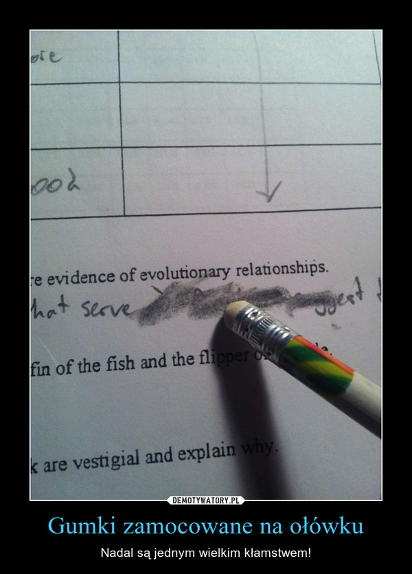 Gumki zamocowane na ołówku – Nadal są jednym wielkim kłamstwem!