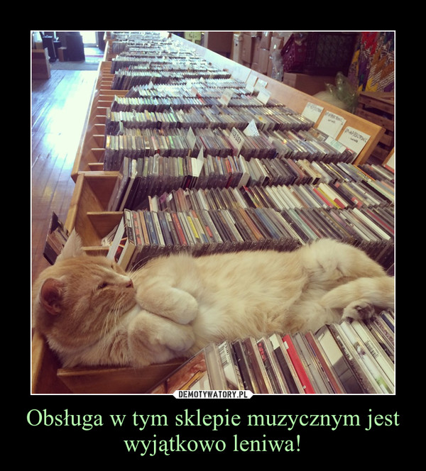 Obsługa w tym sklepie muzycznym jest wyjątkowo leniwa! –