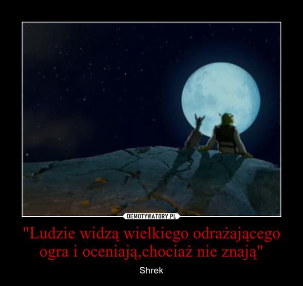 """""""Ludzie widzą wielkiego odrażającego ogra i oceniają,chociaż nie znają"""" – Shrek"""
