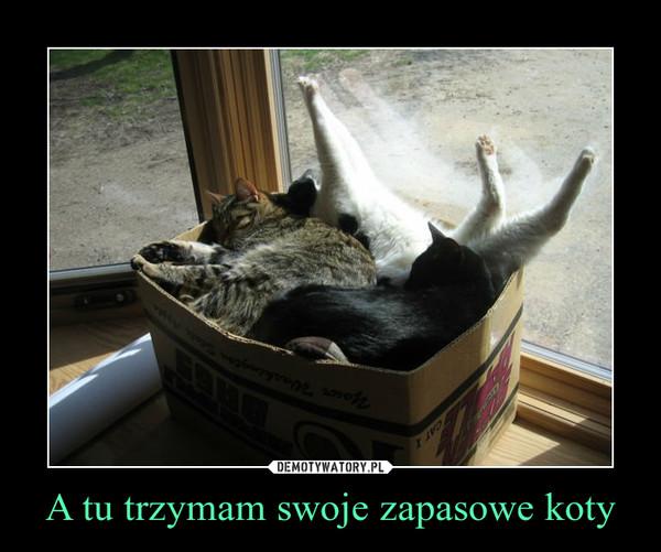 A tu trzymam swoje zapasowe koty –