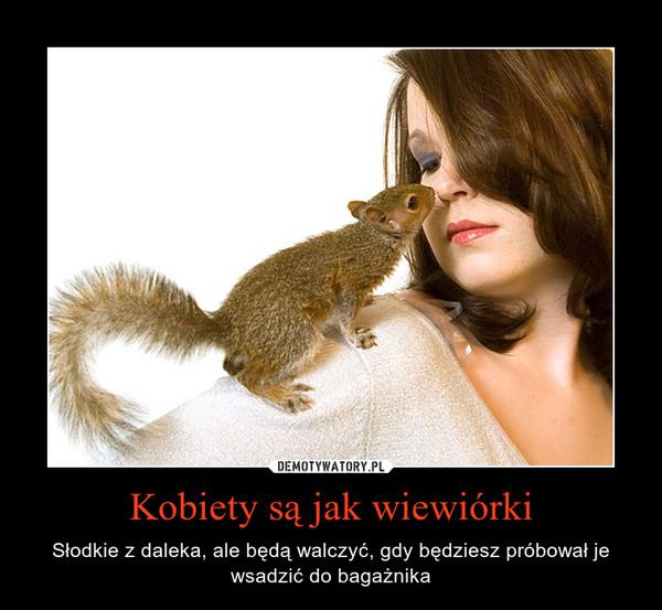 Kobiety są jak wiewiórki – Słodkie z daleka, ale będą walczyć, gdy będziesz próbował je wsadzić do bagażnika