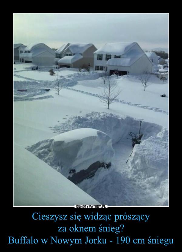 Cieszysz się widząc prószącyza oknem śnieg?Buffalo w Nowym Jorku - 190 cm śniegu –