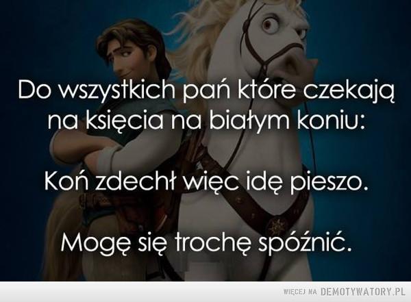 Do wszystkich pań, które czekają na księcia na białym koniu: –