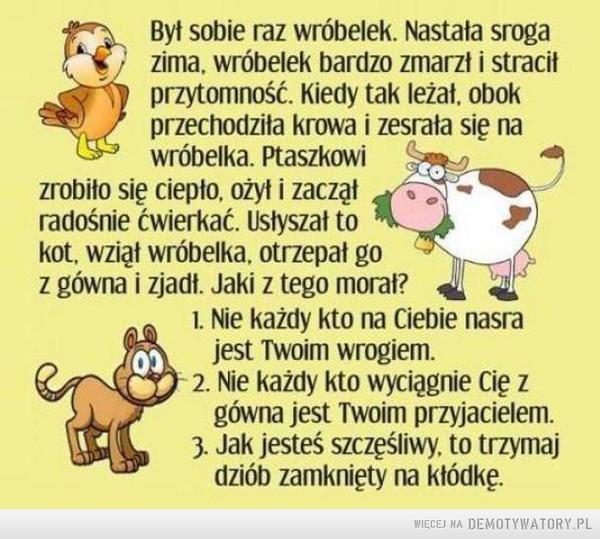 Dowcip –