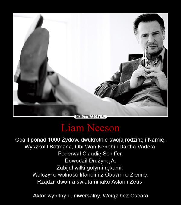 Liam Neeson – Ocalił ponad 1000 Żydów, dwukrotnie swoją rodzinę i Narnię.Wyszkolił Batmana, Obi Wan Kenobi i Dartha Vadera.Poderwał Claudię Schiffer.Dowodził Drużyną A.Zabijał wilki gołymi rękami. Walczył o wolność Irlandii i z Obcymi o Ziemię.Rządził dwoma światami jako Aslan i Zeus.Aktor wybitny i uniwersalny. Wciąż bez Oscara
