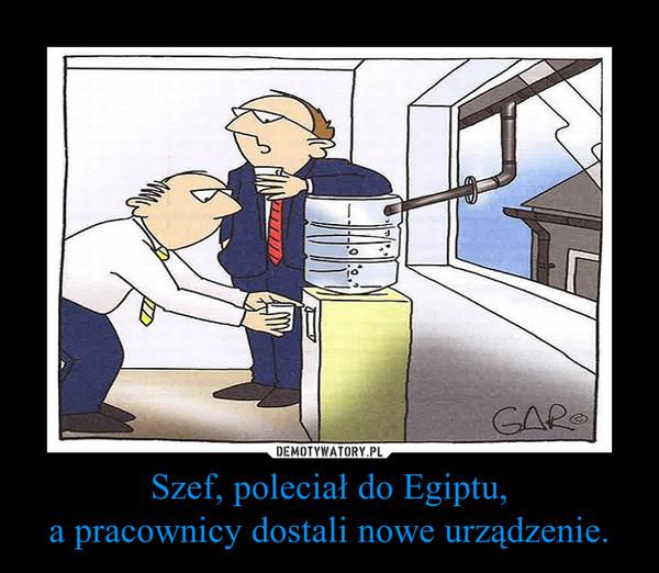 Szef, poleciał do Egiptu,a pracownicy dostali nowe urządzenie. –