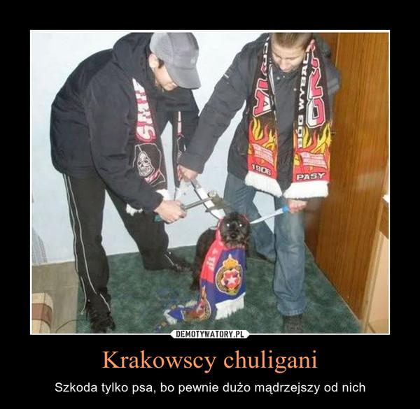 Krakowscy chuligani – Szkoda tylko psa, bo pewnie dużo mądrzejszy od nich