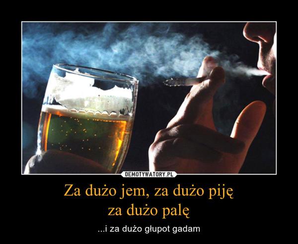 Za dużo jem, za dużo pijęza dużo palę – ...i za dużo głupot gadam