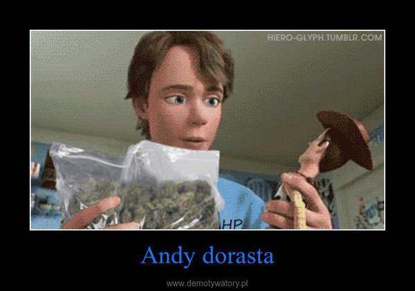 Andy dorasta –