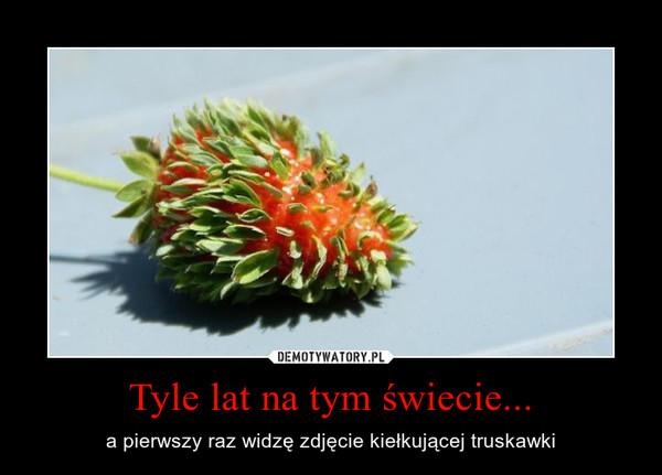 Tyle lat na tym świecie... – a pierwszy raz widzę zdjęcie kiełkującej truskawki
