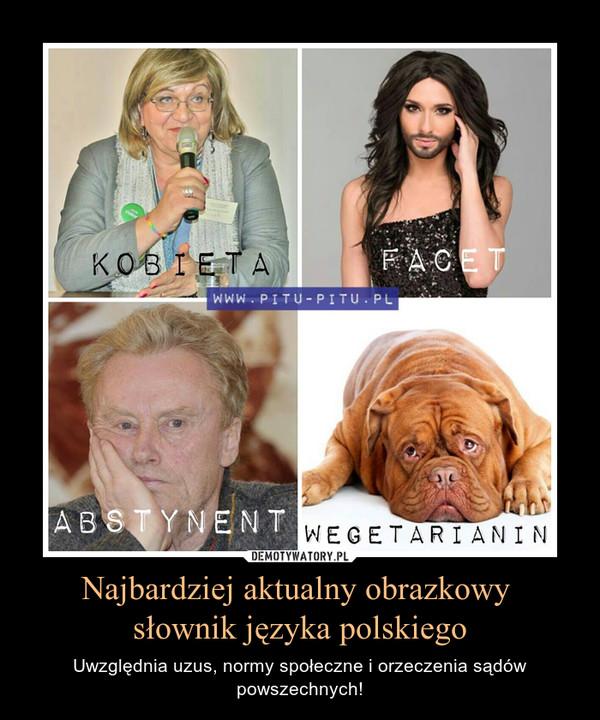 Najbardziej aktualny obrazkowy słownik języka polskiego – Uwzględnia uzus, normy społeczne i orzeczenia sądów powszechnych!