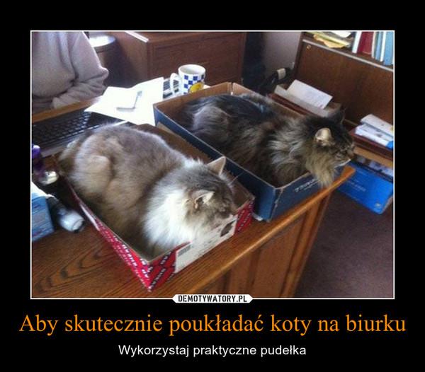 Aby skutecznie poukładać koty na biurku – Wykorzystaj praktyczne pudełka