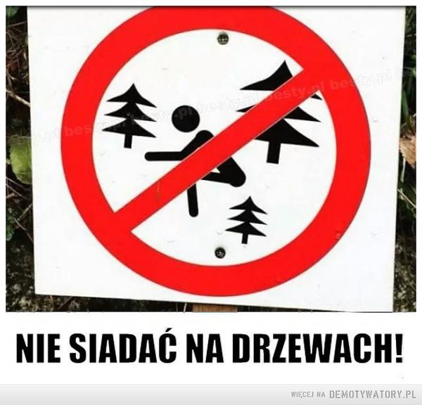 Ekologiczne znaki w lesie –