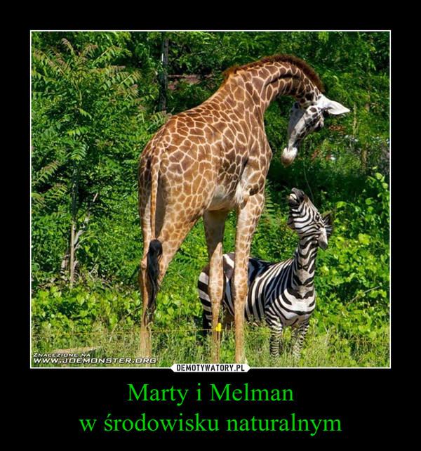 Marty i Melmanw środowisku naturalnym –